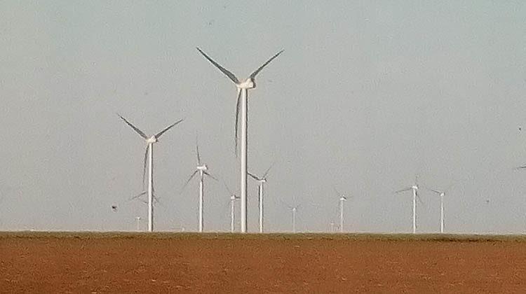 фото ветропарка