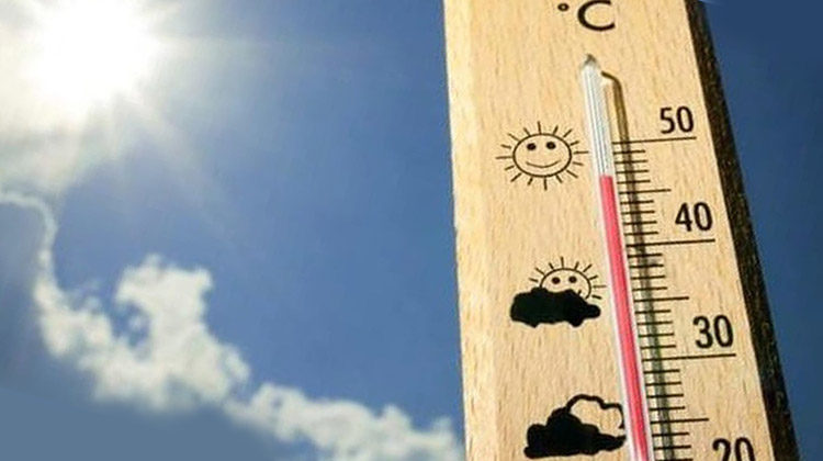 фото жара в Украине