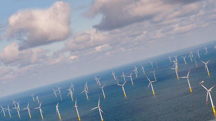 фото ветропарк в море