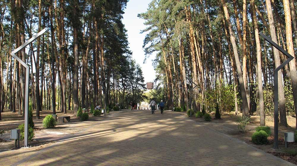 Центральна алея парку