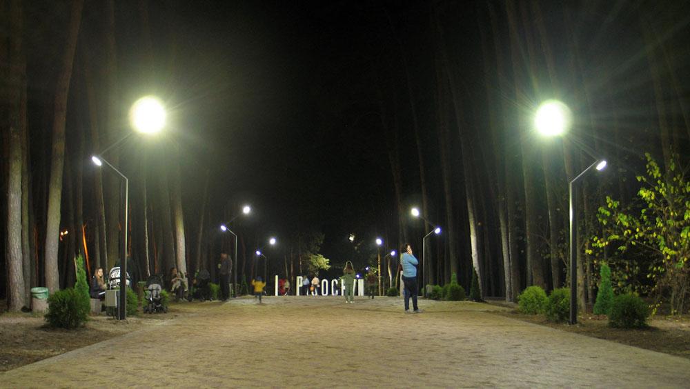 Центральна алея парку вночі