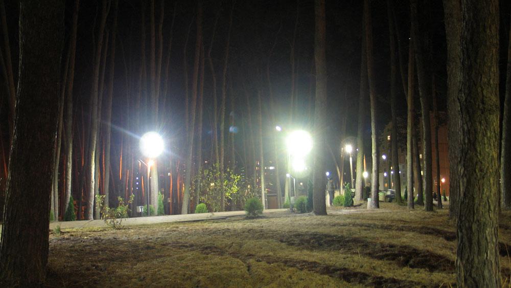 Паркове освітлення вночі в лісі