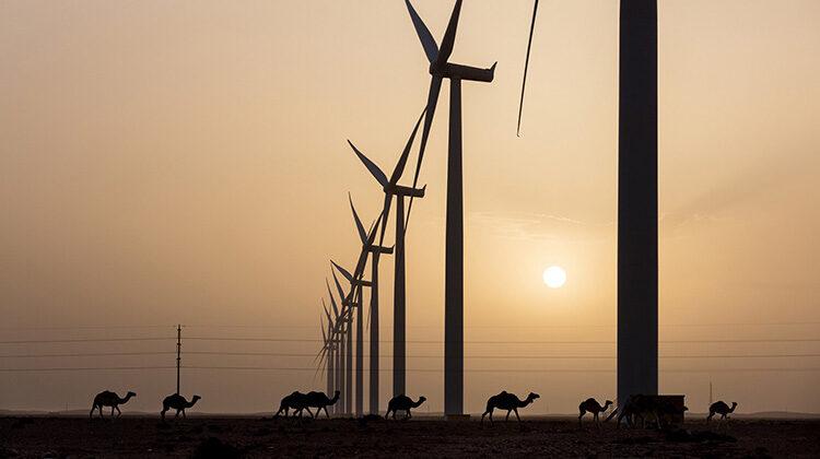 фото ветропарк в Марокко