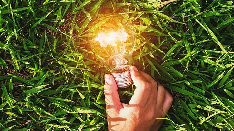 фото зеленая энергетика в украине